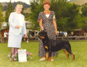 ch female rottweiler from scotland