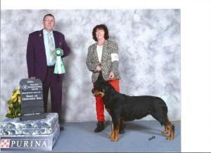 female rottweiler wins best of opposite