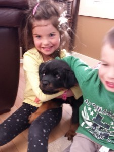 male rottweiler puppy with kids